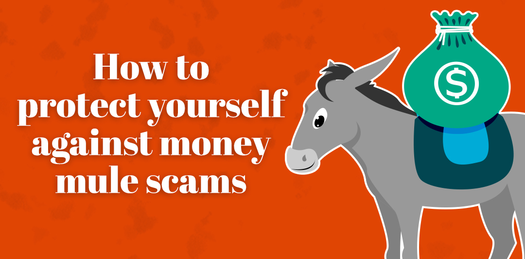 How to protect yourself against money mule scams